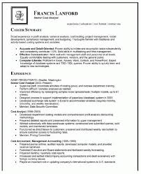 Excel Resume Template Business Analyst Resume Summary Examples Business Analyst Resume