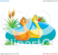 duck swimming in water clip art u2013 clipart free download