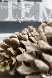 how to bleach pine cones country design style