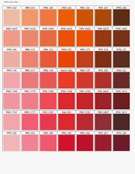 Colour Cool Coral Colour Images 47 Coral Color Dress Images 49820