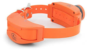 Spindrift Comfort Collar Store Nice Dog Collar