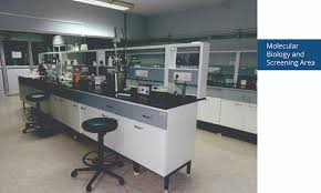 lab bench molecular biology embio limited