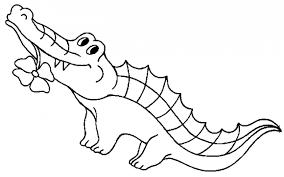 drawn crocodile outline pencil and in color drawn crocodile outline