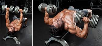 Reverse Grip Bench Press Upper Chest Top 10 Best Chest Exercises Muscle U0026 Performance