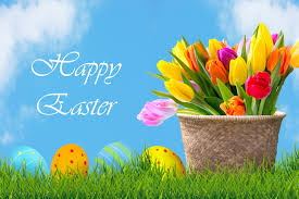 easter pictures easter eggs flowers background free stock photo domain