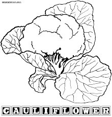 cauliflower coloring pages coloring pages to download and print