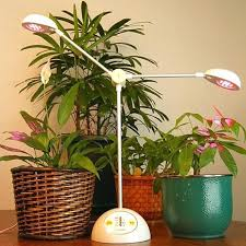 led lights for indoor plants grow lights for indoor garden indoor plants using led lights simple