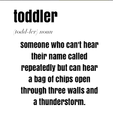 Toddler Memes - 8 memes that explain toddlerhood perfectly