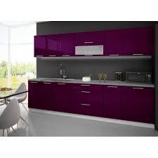 comment cuisiner les aubergines meuble de cuisine laque aubergine design d intérieur