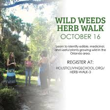orlando wild weeds herb walk florida of holistic living