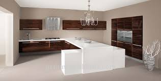 acrylic kitchen cabinets doors new color acrylic kitchen cabinet