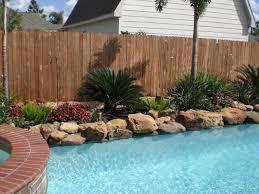 Landscaping Around Pools by 40 Best Tropical Plants For Pool Images On Pinterest Gardens