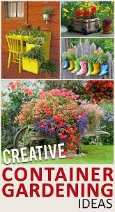 creative container gardening ideas gardening hacks garden