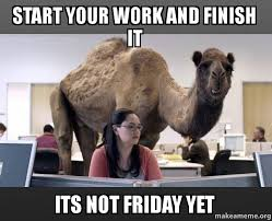 Finish It Meme - start your work and finish it its not friday yet hump day camel
