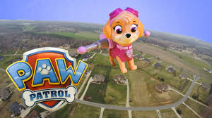 paw patrol nickelodeon skye flies air saves paw patrol