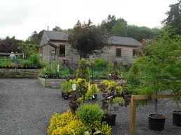 woodside walled garden cafe jedburgh picture of the birdhouse