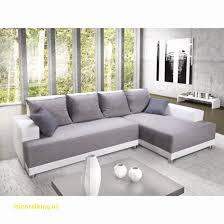 levrette sur canapé canapé portet sur garonne stuffwecollect com maison fr