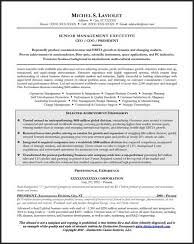 Sample Resume For Ceo by Resume Samples For All Professions And Levels