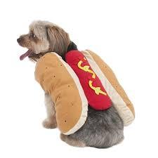 pet costumes fashion pet lookin hot dog dog costume dog costumes