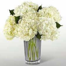 white hydrangea bouquet ivory hydrangea bouquet 16 m10 in boulder co boulder gardens