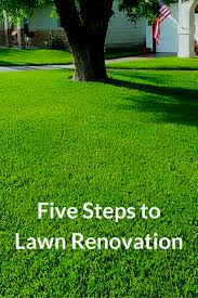 Lawn Care Gadgets by Watch This Video To Learn Five Steps To Lawn Renovation That Focus