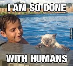 Humans Meme - im so done with humans http desigag com 342 fuuny meme