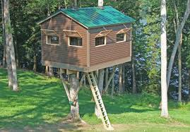 ideas livable tree house plans treehouse ideas elevated tree