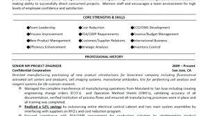 hybrid resume template resume hybrid resume template free exle word hybrid resume