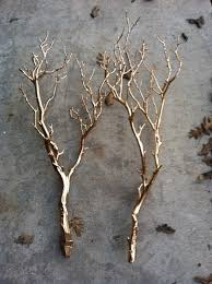 Decorative Stems For Vases Spray Paint Tree Branches Gold Makes For Amazing Centerpieces
