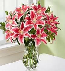 pink lillies pink stargazer lilies in san jose ca valley florist