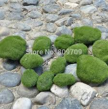 Topiary Plants Online - 100 flowering topiary plants topiary trees artificial trees