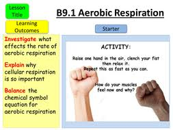 aqa gcse b9 1 aerobic respiration by teachallscience teaching