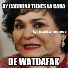 Funny Hispanic Memes - funny mexican pictures in spanish google search the hispanic in