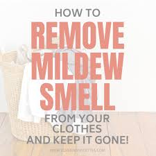 get the mildew smell out of your clothes for good love u0026 sweet tea