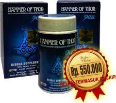 harga resmi hammer of thor asli kapsul hitam italy