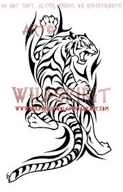 tiger yin yang for photo 5 photo pictures and