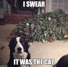 Cat Christmas Tree Meme - dog christmas tree imgflip