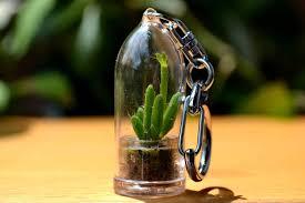 coral cactus terrarium keychain