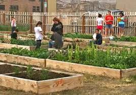 Benefits Of Urban Gardening - urban garden program