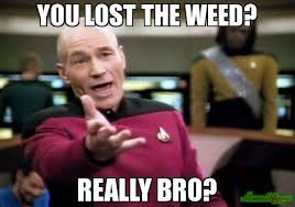 Lost Memes - you lost the weed really bro meme picard wtf 2863 memeshappen