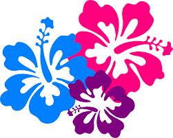 flower clip hawaiian flower clip borders clipart panda free clipart images
