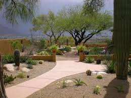 how to desert landscaping plants theme designs ideas and decor