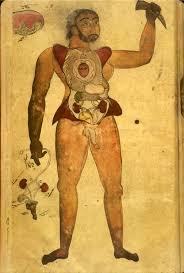 Male Internal Organs Anatomy Islamic Medical Manuscripts Medical Monographs 6