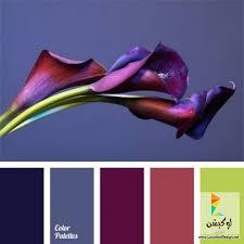 Colors That Match With Purple 301 Best Pantone Images On Pinterest Colors Color Combinations