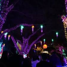 when do the zoo lights start zoo lights 199 photos 99 reviews festivals 6200 hermann park