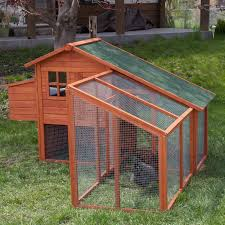 top 7 chicken coops article hayneedle com