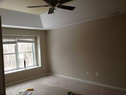 suggestions for tray ceiling color