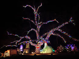 christmas lights austin u0026 san antonio u2013 soul flutter