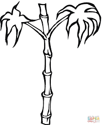 bamboo coloring page free printable coloring pages