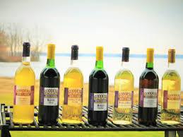 Trellis Wine Contact